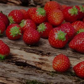 Erdbeeren im Selfkant