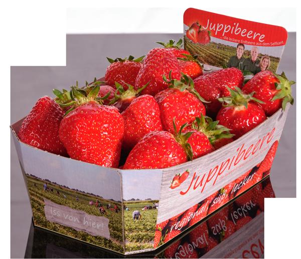 Juppibeere   Erdbeeren Spargelhof Hensgens